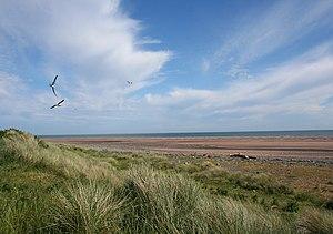 English: Sea gulls playing at South End Rabbit...