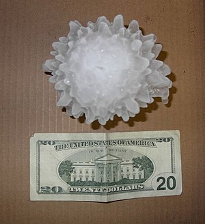 A large hailstone, approximately 5 1/4 inches ...