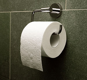 "English: Toilet paper, orientation ""over&..."