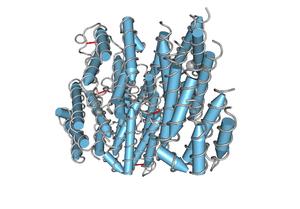 1RH2 Recombinant Human Interferon Alpha 2b