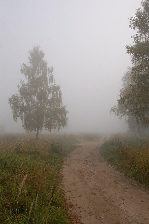 Туман Википедия