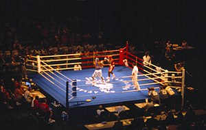 Crowd scene. U.S. boxer in blue is Antonio Tarver