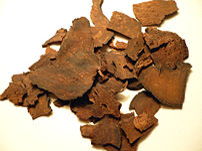 Organic dried Polygonum multiflorum root. Phot...