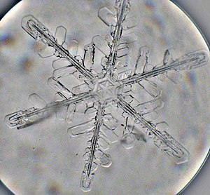 Snowflake. Small microscope kept outdoors. Sna...