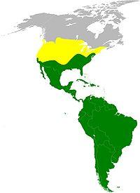 Peta persebaran Hering Kalkun. Kuning berarti persebaran saat musim panas, hijau berarti persebaran sepanjang tahun.