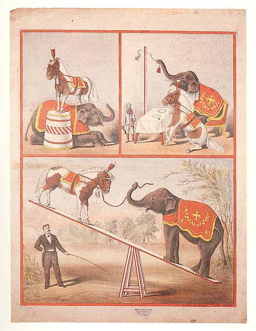 Freidländer.plakat.2