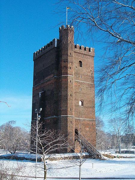 Kärnan i vinterskrud från WIkimedia Commons