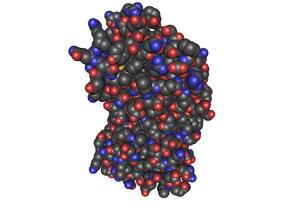 1D9C_Bovine-Interferon-Gamma