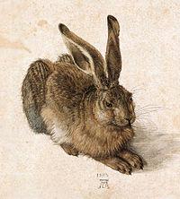 Albrecht Dürer, Joven Liebre, 1502, Acuarela