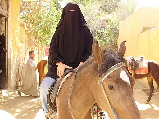 P2090099 veiled arab woman