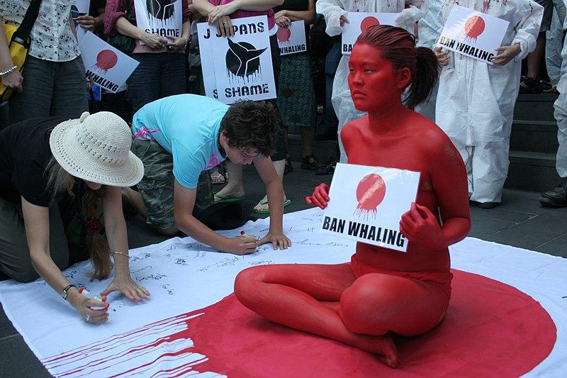 File:Anti-whaling.jpg