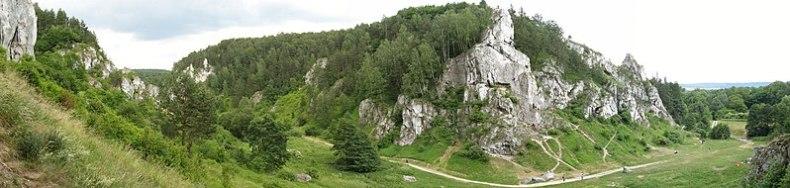 Plik:Kobylańska Valley.jpg