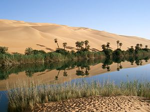Ubari Oasis in the Category:Wadi Al Hayaa Dist...
