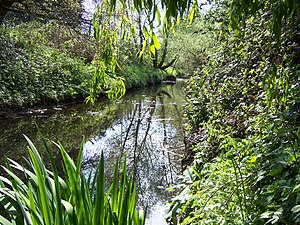 English: The Yeading Brook flowing through Rui...