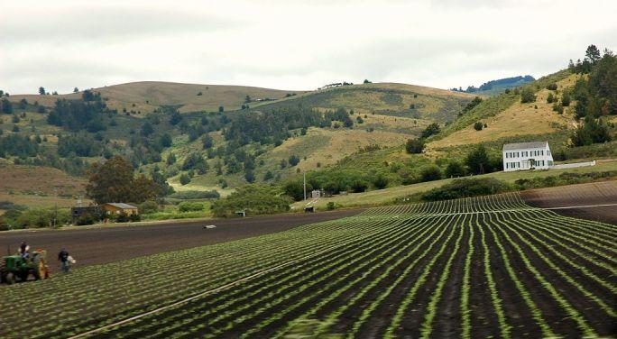 Long fields with farm in California