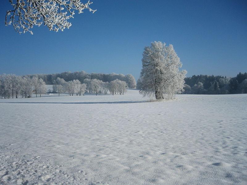 File:Winter landscape in Oberbayern (Bavaria).JPG