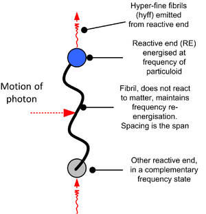 English: Cordus model of the photon
