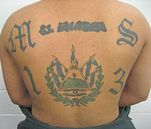 English: Mara Salvatrucha tattoo.