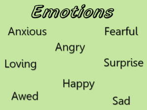 English: Emotions Q-sort