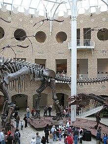 Fernbank Museum Of Natural History Wikipedia
