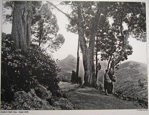 English: Coakers Walk, KodaIkanal, 1900