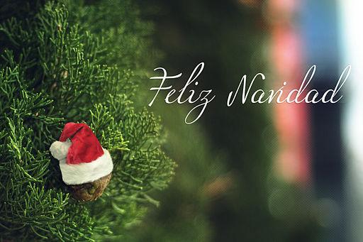Feliz Navidad (8300903157)
