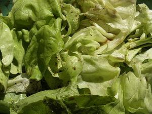 Salad with balsamic vinegar, olive oil, salt a...