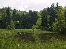 Frau-Holle-Teich: der Sage nach Eingang in Frau Holles Anderswelt