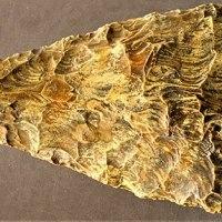 Prehistoric StoneHand Axe