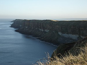 English: Sea Cliffs This is a Supplemental pho...