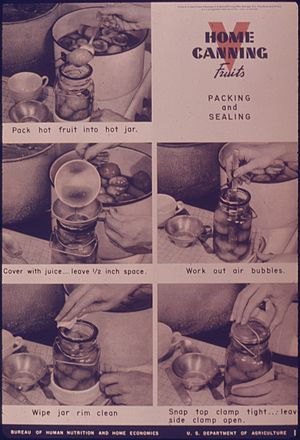 """""""Home Canning Fruits Packing and Sealing&..."""
