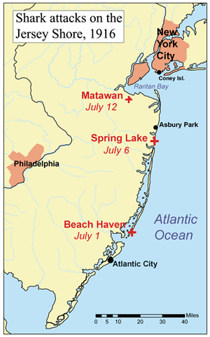 Map showing the Jersey Shore shark attacks of ...