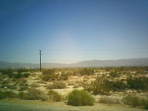 The desert in Southern California. Somewhere i...