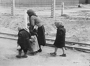 Hungarian Jewish children and an elderly woman...