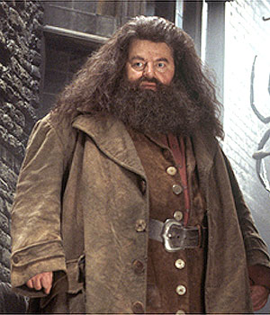 Coltrane as Rubeus Hagrid in Harry Potter and ...