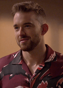 Chandler Massey as Will Horton