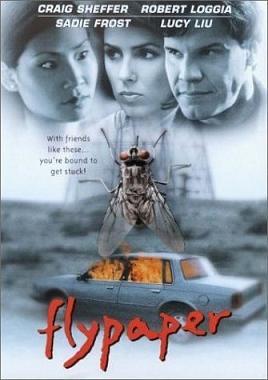 Flypaper 1997 Film Wikipedia