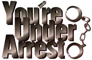 You're Under Arrest! (manga)