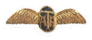 Ata-wings-300.jpg