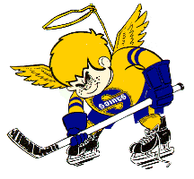 Minnesota Fighting Saints