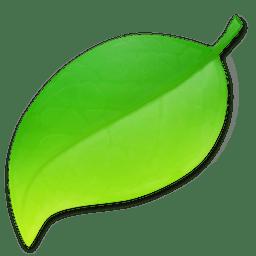 Coda (web development software)