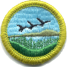 Fish & Wildlife Management, Type J, front