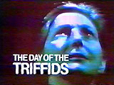 The Day of the Triffids (TV series)