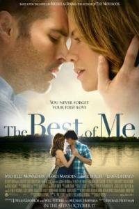 Poster for 2014 romantic drama The Best of Me