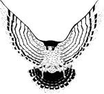Faith Bible's team logo