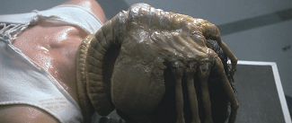 El Alien que nos protege. (1/5)