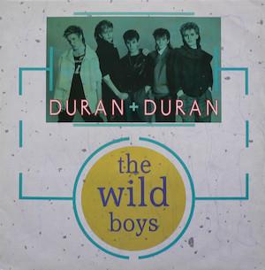 The Wild Boys (song)