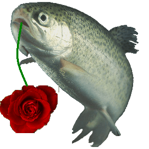 Trout with a rose