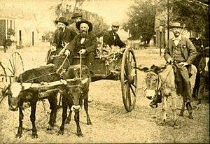Gainesville, c. 1900.