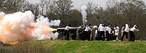 Cannon shot horiz